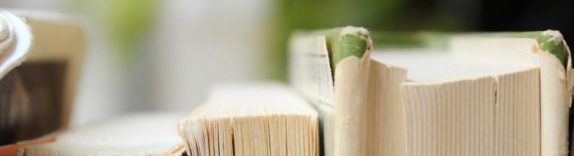 <i>The Autumn Prince</i> Novel: Cover &Excerpt