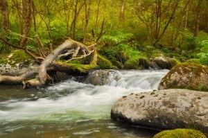 river-scenic-spot